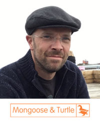 Richard Heywood - Mongoose and Turtle